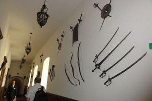 Návštevníci môžu počas prehliadky vidieť aj zbierku zbraní v rytierskych sálach a na chodbách.