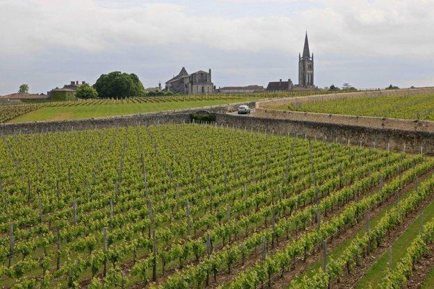 V okolí mesta sú známe vinice.