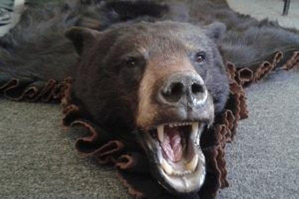 Zaujímavý bol tovar doručený z USA v papierovej škatuli vážiacej necelých 9 kg. Išlo o vypracovanú kožu a lebku so spodnou čeľusťou medveďa baribala.