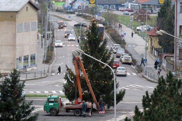 Vianočný stromček daroval v Želiezovciach jeho obyvateľ.