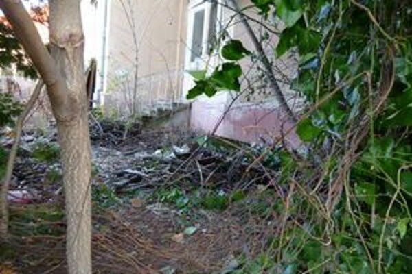 Cez túto dieru v plote chodili bezdomovci do domu.