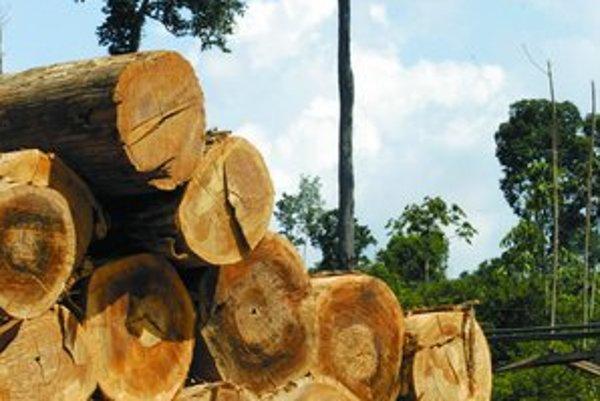Najväčší dažďový prales sveta ilegálne klčujú najmä farmári. Brazílska vláda na nich teraz posiela policajtov.