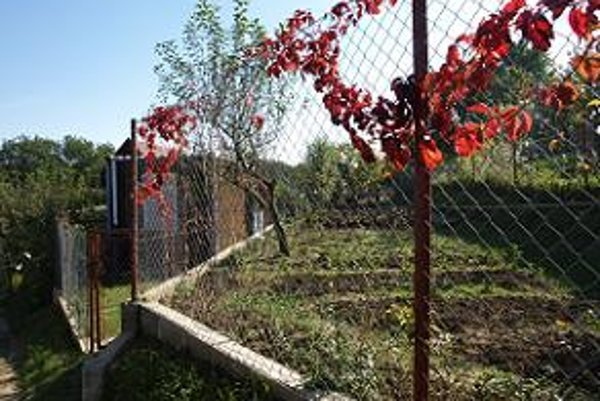 Záhradkári si svoj majetok chránia aj takýmto oplotením.