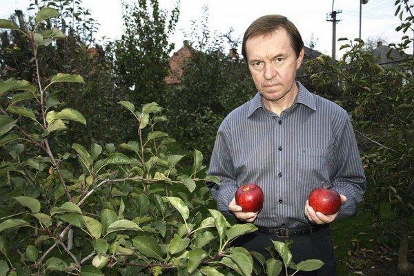 Pestovateľ vo svojej záhrade v Kostolnom Seku.