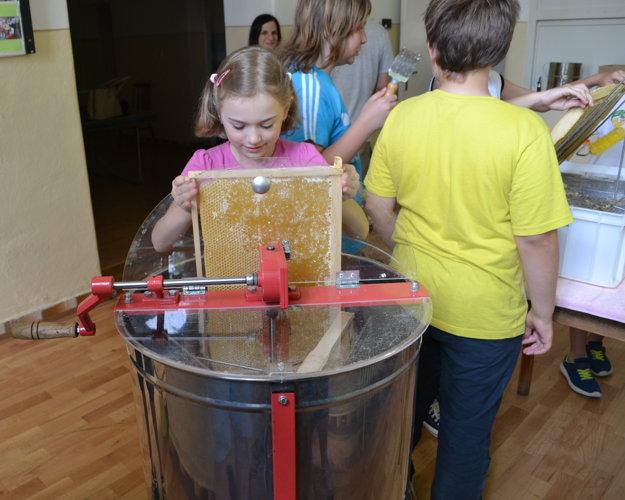 Evka sa chystá vytáčať med.