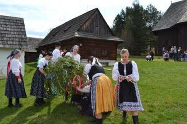 Folkloristi z Belej-Dulíc pri stavaní mája.