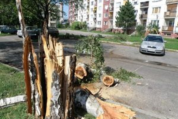Búrka poškodila aj stromy na Roľníckej uici v Nových Zámkoch.