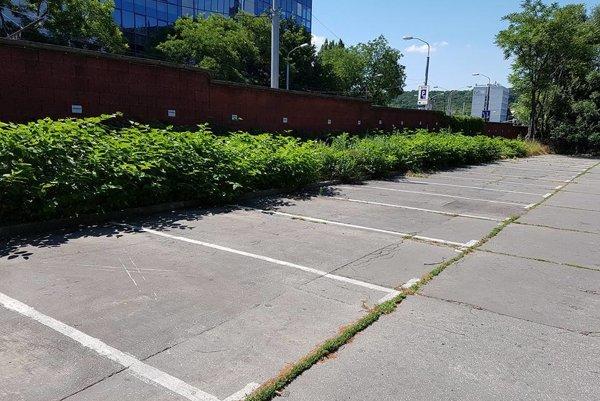 Bezplatné parkovacie kapacity v blízkosti Partizánskej lúky sa rozšíria o 48 miest.
