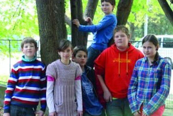 Zľava: Damián (11), Katka (11), Dominik (12), Samko O. (12), Janka (12). Na strome: Samko K. (11).