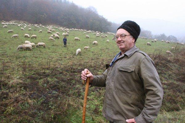 Ministerstvo práce plánuje finančne podporiť aj vzdelávanie v oblasti chovu oviec.