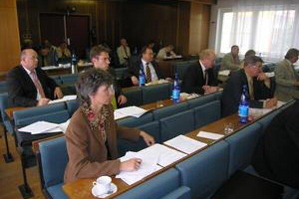 Mestské zastupiteľstvo. Poslanci sa zaoberali aj mestskými firmami.