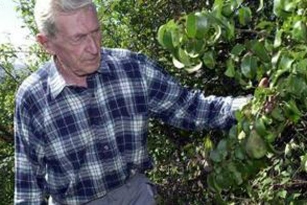 Až 90 percent nájomcov v záhradkárskych osadách sú dôchodcovia.