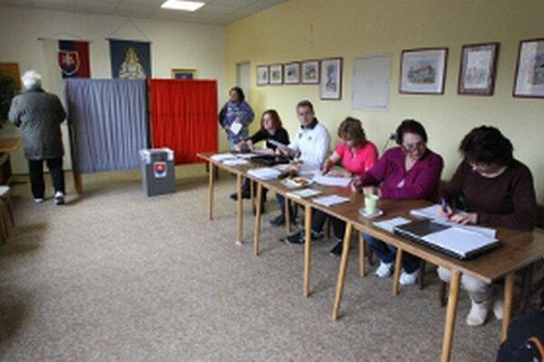 Pri eurovoľbách budú komisie početnejšie.