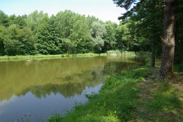 Zaplavený povrchový lom Konštantín je zaradený medzi handlovské pamätihodnoti.