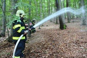 Hasenie. Našťastie išlo len o simulovaný požiar.