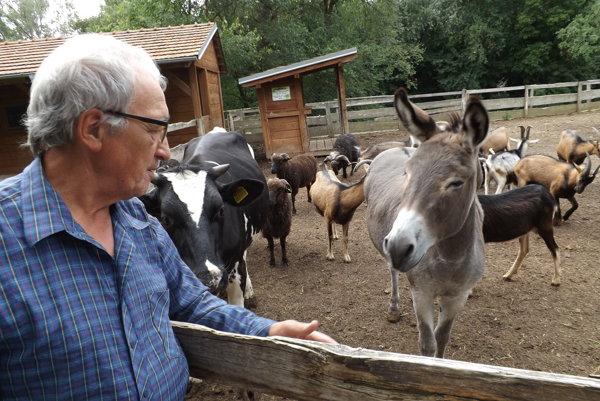 Jozef Cibula kŕmi zvieratá denne.