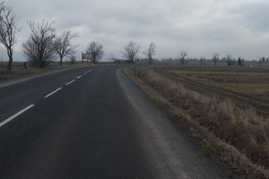 Menšie stromy popri vozovke zostali.