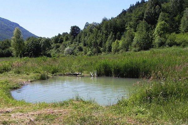V lete je jazierko plné kúpajúcich sa detí a mladých.