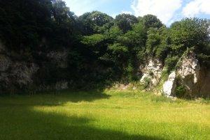 Na mieste bývalej skládky gudrónov rastie tráva astromy.