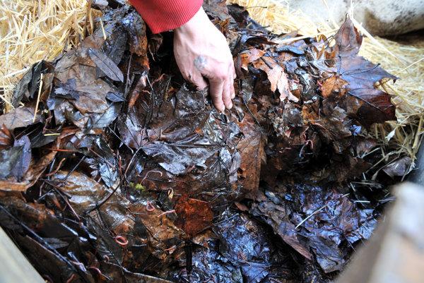 Biologicky rozložiteľný odpad.