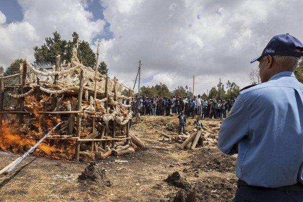V Afrike zadržanú slonovinu pália.