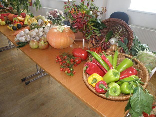 Zelenina dominovala na výstave úrody v Dome kultúry v Necpaloch.