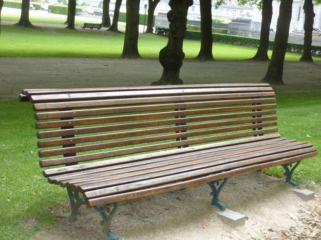 Vycvičené vtáky? Ak si chcete sadnúť na lavičku u nás, musíte si ju najskôr skontrolovať, či ju predtým neoznačili vtáky. V. Šutiak sa v Bruseli začal zaujímať o to, prečo sú tamojšie lavičky oveľa čistejšie. A ako zistil, o čistotu lavičiek sa tam pravidelne starajú konkrétni ľudia. Raz, či dva razy za deň obídu na bicykli svoj rajón vybavení čistiacimi prostriedkami a keď je to potrebné, špinavú lavičku jednoducho umyjú dezinfekčným roztokom.
