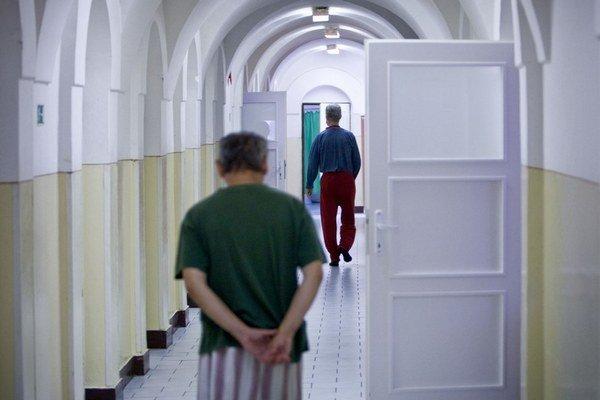 Ľudia so schizofréniou žijú aj v Domove sociálnych služieb  Lúč v Pruskom.
