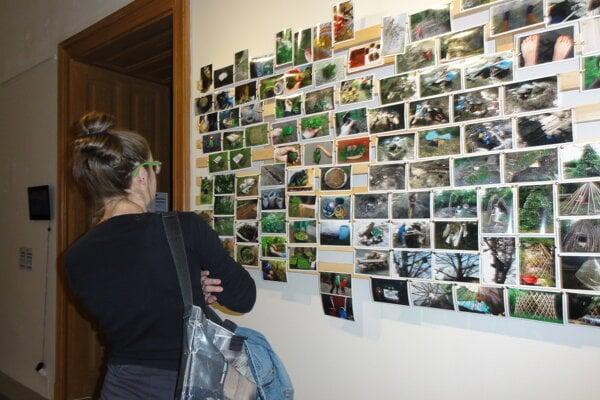 Záber z vernisáže výstavy Newrope.