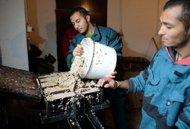 Projekt Buduj svoju budúcnosť dáva mladým Rómom zo znevýhodneného prostredia šancu rozbehnúť vlastné podnikanie.