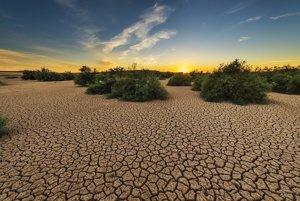 Najväčšie zemské zásoby CO2 sú v pôde, ak sa zvýšia globálne teploty, začnú sa nekontrolovateľne uvoľňovať.