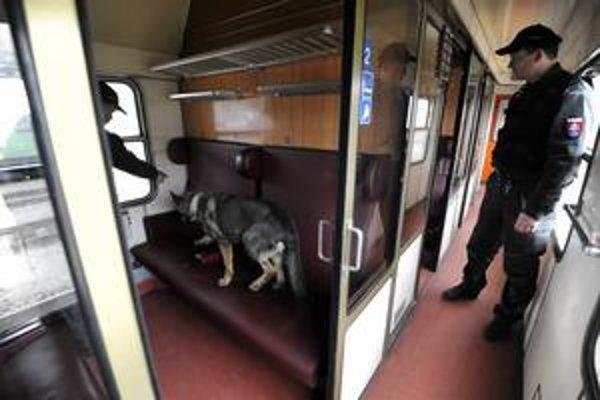 Policajtom pomáhali aj služobné psy.