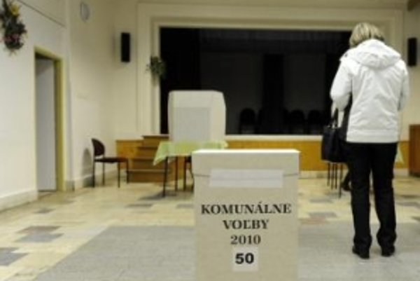 SaS tvrdí, že sa jej podarí presadiť aj hlasovanie cez internet.