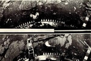 Záber povrchu Venuše z Venery 13. Po Venere 10 išlo o prvé vozidlo, ktorému sa podarilo urobiť a zaslať späť na Zem fotografie.