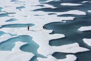Keď sa ľad topí, vytvárajú sa na jeho povrchu malé jazierka.
