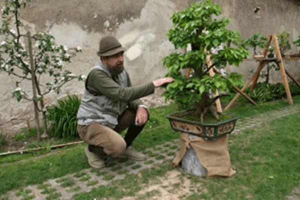 Petrovi Vrablecovi učarovali bonsaje už pred dvadsiatimi rokmi.