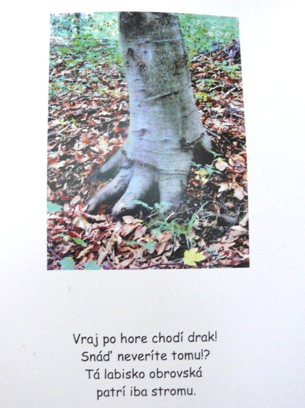Evine básničky často dotvárajú i jej tematické fotky.