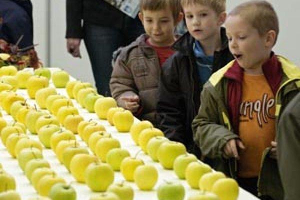 Všetky jablká prihlásené do súťaže, boli prezentované na výstave.