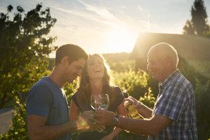 Víno zo štyroch vinárskych oblastí si môžete vychutnať v solídnej vinotéke rovnako ako v jednoduchej vieche Heurigen.