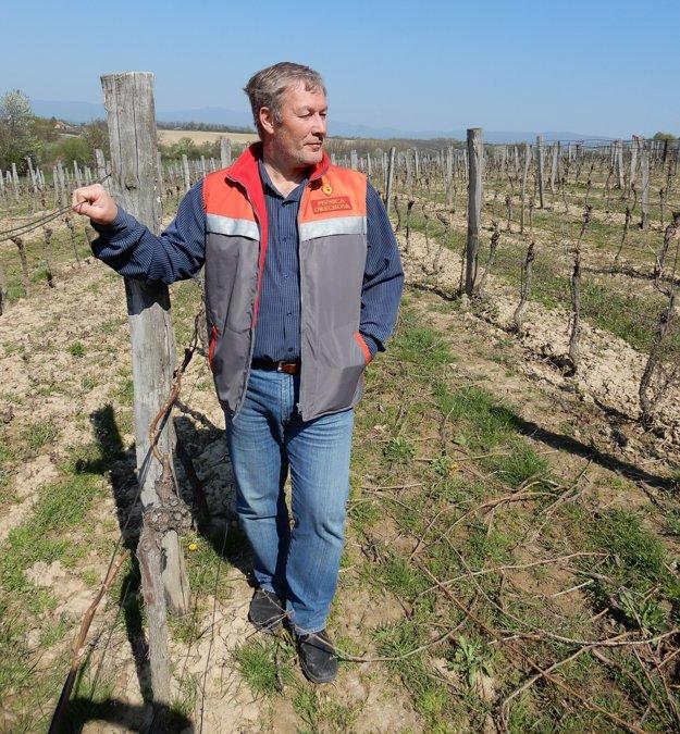 Majiteľ viníc a vinár Pavol Michálek.