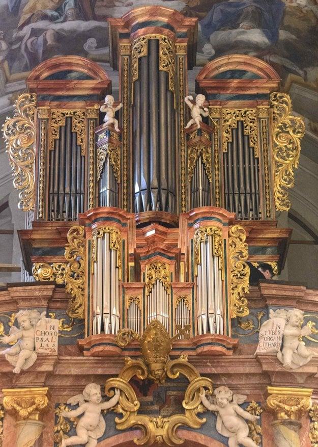 Vynovený organ.