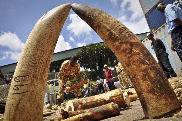 Zadržanú slonovinu väčšinou africké štáty pália. V Číne je po nej veľký dopyt.