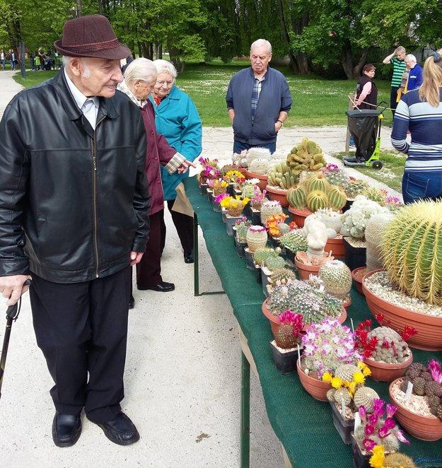 Výstava sa seniorom z Kysuckého Nového Mesta páčila.