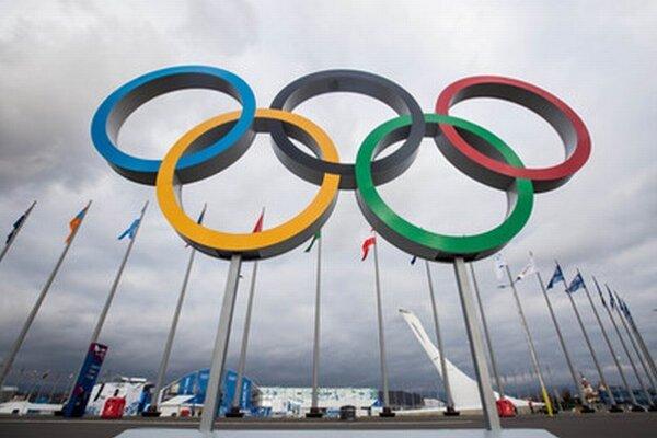Olympíjske kruhy v olympíjskom parku v Soči.