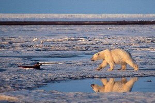 Arktická zem.