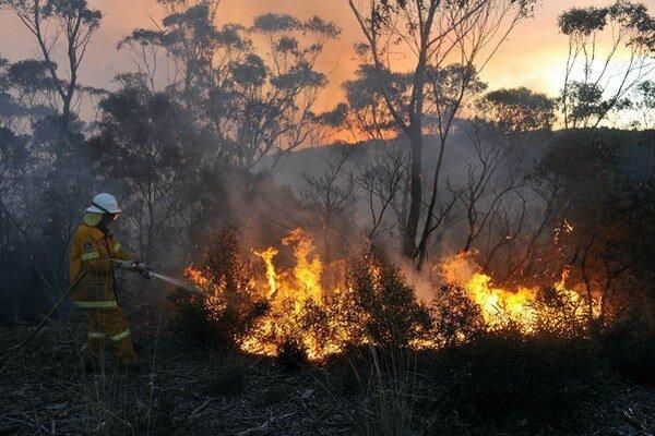 Teplo spôsobilo mnoho požiarov.