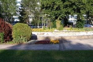 V nefunkčnej fontáne na Vajanského námestí pri Mestskom úrade v Martine dali kompetentní nasadiť okrasné kríky a kvety.