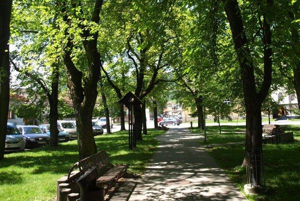 Mestská zeleň často odoláva útokom vandalov.