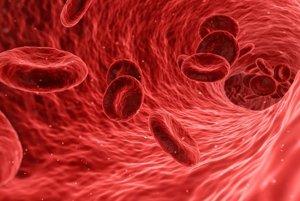 Červených krviniek je v ľudskom tele najviac.