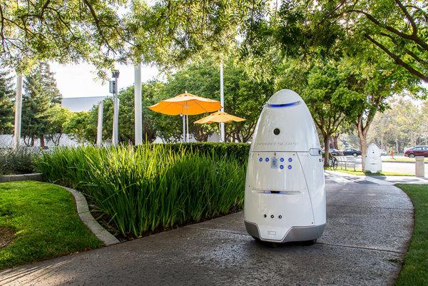 Robot Knightscope.